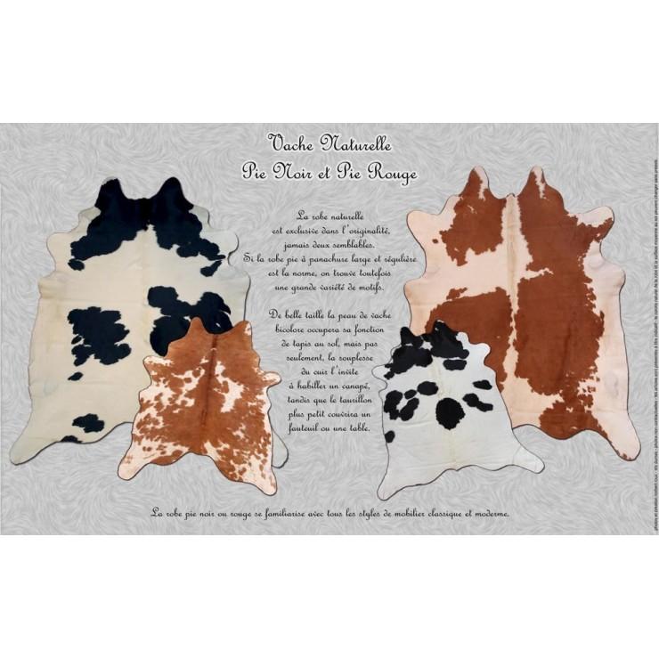 Tapis En Peau De Vache Naturelle Pie Noir Et Pie Rouge Ambiance Canap S